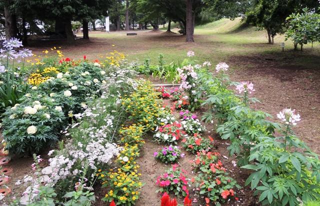 ここでは、四季折々の花を咲かせています。