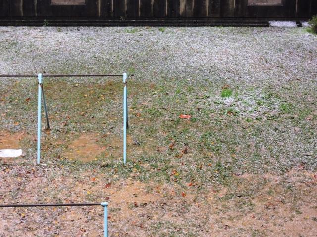 中庭にはうっすらと雪が積もりました。